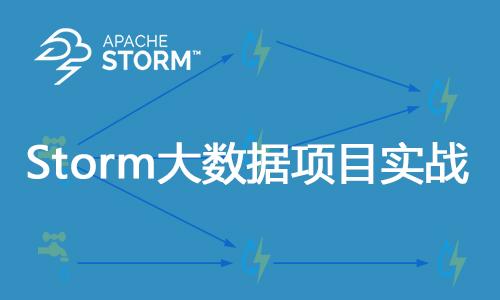 Storm大数据项目实战